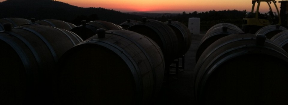 barrelsunset