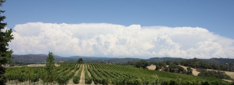 vinyard clouds small